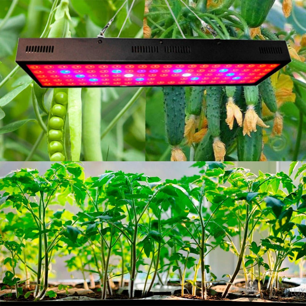Светодиодное освещение - Светодиодный фитосветильник PWL 10W Grow light 000002509 - Фото 2